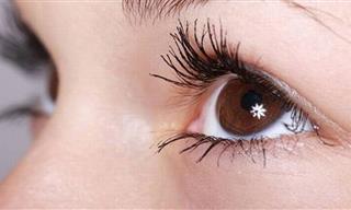 12 Datos Sobre El Sentido De La Vista Que Te Abrirán Los Ojos