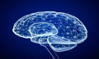 8 Consejos Importantes Para Prevenir Un Derrame Cerebral
