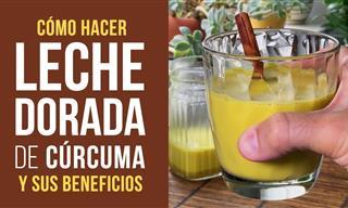 Beneficios De La Leche Dorada