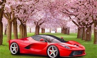 No Te Pierdas Los Mejores Diseños En La Historia De Ferrari
