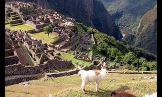 Conoce Los Maravillosos Paisajes De Perú