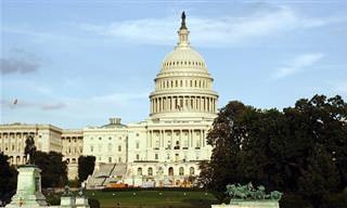Divertido: Así Es Como Funciona Realmente Un Congreso
