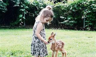 Estos Animales Adoran Conocer a Los Humanos