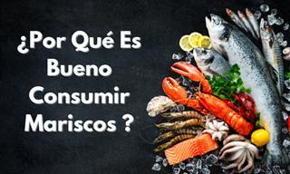 Estos Son Los Beneficios Saludables De Los Deliciosos Mariscos