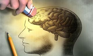 Nuevo Medicamento Para Reducir El Efecto Del Alzheimer