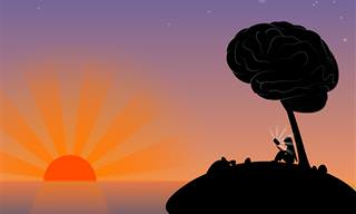 Quiz: ¿Qué Tipo De Inteligencia Controla Tu Cerebro?