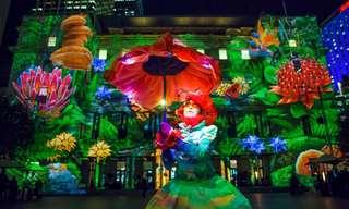 Vivid Sídney: Un Deslumbrante Festival De Luces