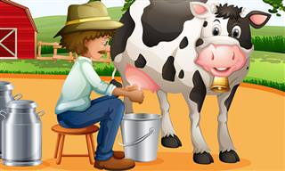 Chiste: El Granjero y La Vaca Rebelde