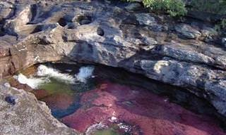 ¡La Belleza Natural Del Río De 5 Colores!