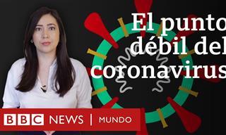 El Punto Débil Del Covid-19 Descubierto Por Una Mexicana