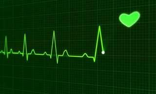 ¡Simple Guía De Enfermedades Cardiovasculares!