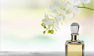 9 Prácticos Consejos Para Mantener Un Buen Olor Durante El Día