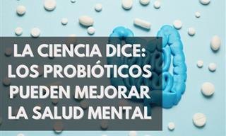 ¿Pueden Los Probióticos Mejorar La Salud Mental? La Ciencia Dice Que Sí