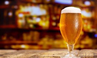 Si Eres Un Amante De La Cerveza No Te Pierdas Esta Recopilación