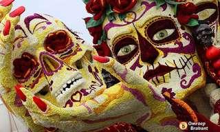 ¡Lo Mejor Del Desfile De Flores Zundert!