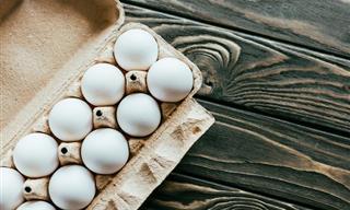 Todo Lo Que Necesitas Saber Sobre Los Huevos