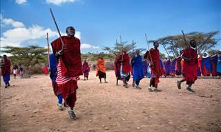 Divertido: Enseñando a La Tribu Nuevas Palabras