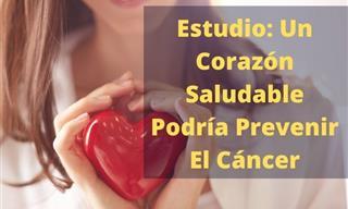 Según Un Estudio, Un Corazón Sano Puede Ayudar a Prevenir El Cáncer