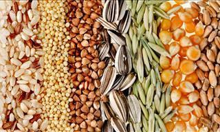 Descubre Los Beneficios De Estas 9 Semillas En Tu Dieta