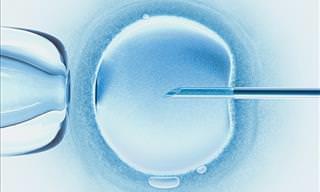 La Ciencia Demuestra Que Se Puede Modificar El ADN De Los Embriones Humanos