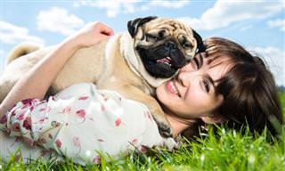 Tener Un Perro Puede Ser Excelente Para La Salud De Tu Corazón