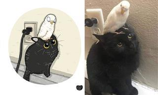 20 Divertidas Caricaturas De Los Felinos Favoritos Del Internet
