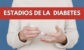 Los Síntomas y Etapas De La Diabetes Tipo 1 y 2