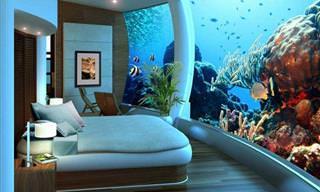 ¡Quédate En Este Hotel Para Una Experiencia Inolvidable!