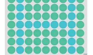 ¿Puedes Ver La Diferencia Entre Tonos Del Mismo Color?