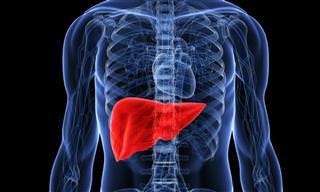 ¿Cómo Proteger y Curar El Hígado?