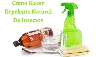 Repelentes  De Insectos Naturales Que Puedes Hacer Fácilmente En Casa