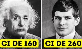 La Historia Del Hombre Con El Coeficiente Intelectual Más Alto
