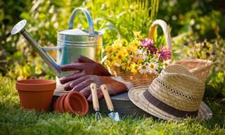 7 Formas De Deshacerte De La Maleza En Tu Jardín
