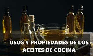 Todas Las Propiedades De Los Aceites De Cocina En Una Compilación