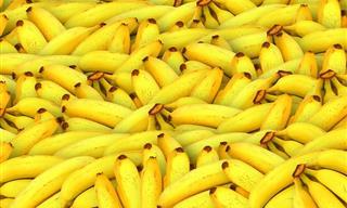 Una Banana Al Día También Alarga La Vida