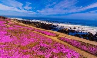 Lugares Pintados Por Colores De La Naturaleza
