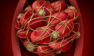 8 Síntomas De Un Coágulo De Sangre