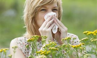 Cómo Hacer Frente a Una Infección Sinusal