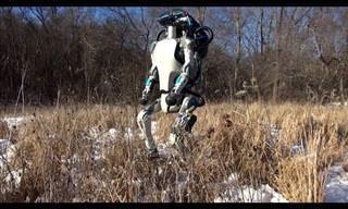 Sorpréndete Con Las Habilidades De Estos Robots