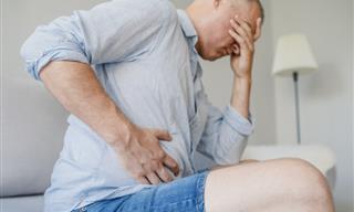 Bacteria Relacionada Con La Enfermedad De Hígado Graso