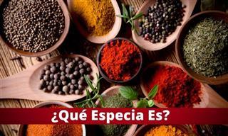 Test: ¿Qué ESPECIA Es?