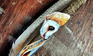 Impresionante Arte Pintado En Plumas