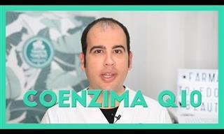 ¿Cuál Es La Función De La Coenzima Q10 En Nuestro Cuerpo?