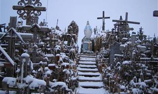Nunca Has Visto Un Santuario Como Este