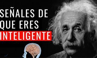 14 Señales De Que Eres Una Persona Altamente Inteligente