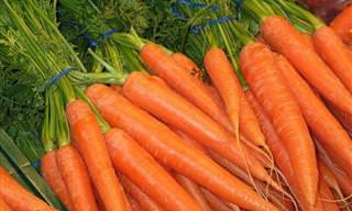 Ahorra Dinero Cultivando Estos 10 Vegetales En Casa