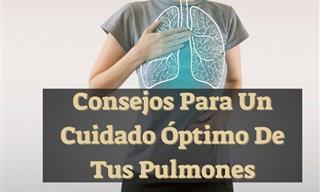 Una Completa Guía Para El Cuidado Óptimo De Tus Pulmones