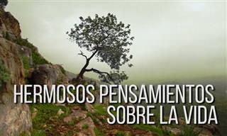 Acerca De Lo Bello Que Es Vivir...