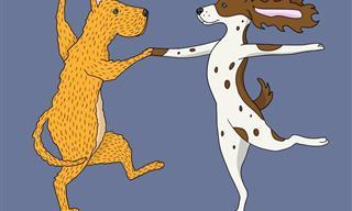 Divertido Video De Perros Bailando