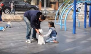 Video: Experimento Social Sobre El Secuestro De Niños